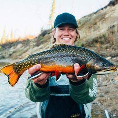www.pinterest.com/1895gunner/   stunning brook trout