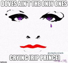 DOVES AIN'T THE ONLY ONES CRYING (RIP PRINCE) | image tagged in prince,rip,purple | made w/ Imgflip meme maker