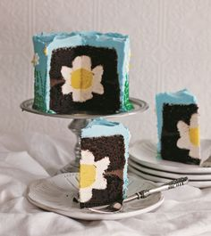 This sweet little cake design was originally inspired by my mother-in-law. Her birthday is January and she loves the flowers. Since her birthday is in the dead of winter, I decided to make her a cake with glorious happy flowers all over it! Pretty Cakes, Cute Cakes, Beautiful Cakes, Amazing Cakes, Surprise Inside Cake, 13 Desserts, Easter Desserts, Daisy Cakes, Flower Cakes