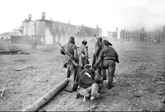 Russians carrying wounded comrade to safety. (1941)-By the end of November of 1941, with only Sevastopol in Soviet hands, the decision had been taken to evacuate most of the Soviet forces in Crimea.  That left by December only the Independent Coastal Army under the command of Major-General Ivan Petrov together with the Black Sea Fleet to defend the city. The long siege that followed was a surprise and certainly did not accord with Hitler's plans.