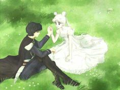 Princess Serenity and Prince Endymion sitting on the grass of a meadow together Sailor Moon Y Darien, Sailor Moon Girls, Arte Sailor Moon, Sailor Uranus, Sailor Mars, Sailor Moon Background, Sailor Moon Wallpaper, Moon Princess, Sailor Princess