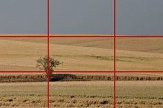 Site expliquant règles bases de la photo, de façon claire et simple
