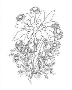 Edelweiss & Chamomile Tattoo Sketch