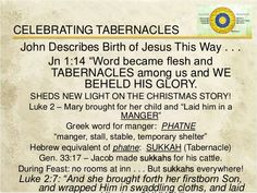 God& appointed time part 5 tabernacles acy Feasts Of The Lord, Feast Of Tabernacles, The Lost Sheep, Old And New Testament, Birth Of Jesus, Greek Words, The Eighth Day, Torah, A Christmas Story