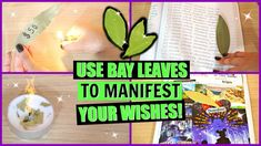 Bay leaves are so magical! Here are 5 different ways you can use bay leaves every day to manifest your wishes, goals and intentions. These are extremely powe. Bay Leaf Plant, Olive Oil Uses, Almond Oil Uses, Money Spells That Work, Castor Oil Benefits, Wiccan, Magick, Aloe Vera For Hair, Removing Negative Energy
