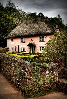 Oh my, thatched and pink too! Rose Cottage, Torbay, England