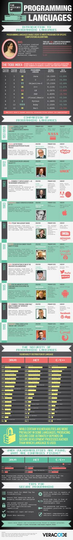 Infographic Brief Of Programming Languages – History & Overview | E-Services India