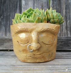 ADORABLE Edgy HANDMADE Handbuilt Golden Speckled Succulent Air Plant Planter Pot Head
