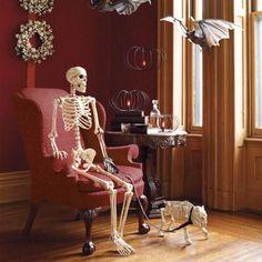Skeleton's Study Scene