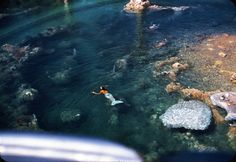 Mermaids in the submarine lagoon at Disneyland. It's a shame, but there are reports the lagoon will be removed in late 2014 or 15.