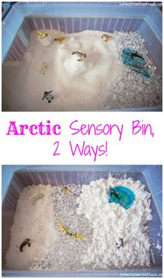 [winter theme] Arctic Sensory Bin, Two Ways! Sensory Tubs, Sensory Activities, Winter Activities, Sensory Play, Classroom Activities, Preschool Activities, Preschool Winter, Sensory Boxes, Work Activities