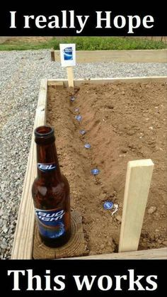 Sowing+beer+caps