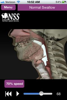 Northern Speech Services Dysphagia app has amazing graphics and videos of the swallow!