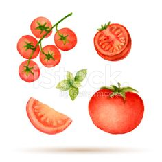 Set of watercolor vegetables. royalty-free stock vector art