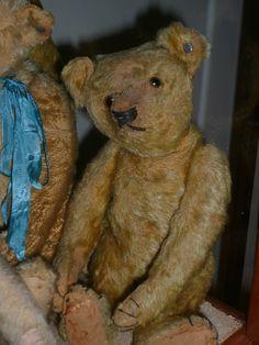 Steiff ~ antique mohair teddy bear