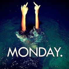 Yes it's Monday again! Monday's can be rough but we have 50 funny Happy Monday quotes to brighten your day. Yes it's Monday again! Monday's can be rough but we have 50 funny Happy Monday quotes to brighten your day. Week End Quotes, Rough Day Quotes, Happy Monday Quotes, Monday Humor Quotes, Its Friday Quotes, Work Quotes, Monday Sayings, Monday Morning Quotes, Humor Videos