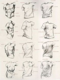 "Képtalálat a következőre: ""folding shirt drawing"" Body Drawing, Anatomy Drawing, Manga Drawing, Life Drawing, Drawing Sketches, Drawings, Shirt Drawing, Sketching, Fabric Drawing"