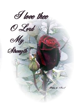 You are my strength Lord!!