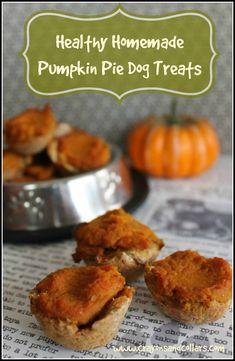 Homemade pumpkin pie dog treats from www.crayonsandcollars.com