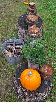 Stomping in the Mud: Pumpkin Time.........Provocation with loose parts