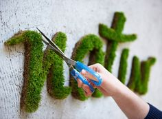 eco-graffiti - talvez espuma floral pintada e grama artificial funcionem.