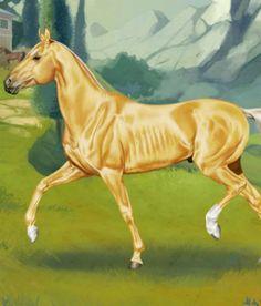 Alkhel-Terkini csődör. Horse Reality Horses, Animals, Animales, Animaux, Animal, Animais, Horse