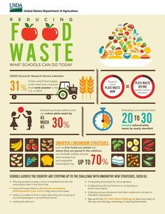 Nearly a quarter of what gets dumped into the garbage can at school cafeterias is food.