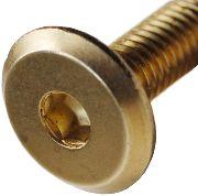 ter resistant machine screws