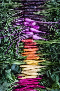 Get all the very best local and seasonal produce at your farmers market and create your very own farmers-market-salad-adventure! Fruits And Veggies, Fruits And Vegetables, Organic Vegetables, In Season Produce, Farmers Market, Produce Market, Organic Recipes, Healthy Drinks, Food Styling