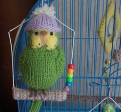 "Budgerigar  Knitted life size Budgie  "" Mary  "" Parrot miniature bear artist"