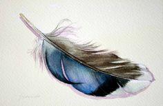 Feather 154 Mallard Feather - Original Watercolour