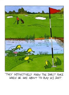Golf Quotes They instinctively knew the safest place when he was about to play his shot. - Howard's Golf focuses on Golf! Find golf tips for beginners, to swing tips on a proper golf stance, and selecting the best equipment. We're talking Golf! City Golf, Golf Humor, Funny Golf, Sports Humor, Tiger Woods, Volkswagen Golf, Nike Dri Fit, Golf Birthday Cards, Eye Candy