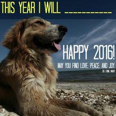 Happy 2016!!