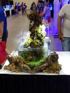 Kevin Kelly's 2017 Fresh Fest tank