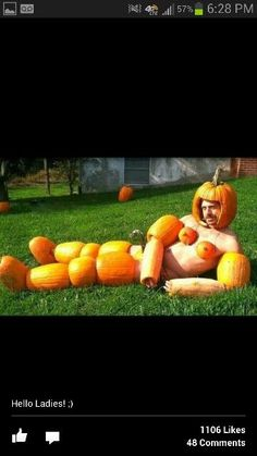 What the hell has this maniac done to these poor pumpkins? #pumpkinsarenotwearable