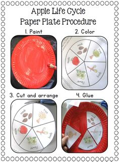 Paper Plate Life Cycles for a Frog, Pumpkin, Apple, Sunflower, Plant, Ant, Butterfly, Watermelon, Salmon, and Sea Turtle.