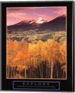 Explore Aspen Grove  Canvas