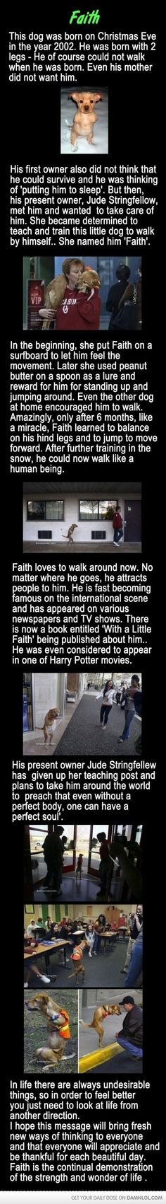 """Another tear jerking story! Always remember to have a little """"Faith"""""""