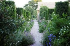 Garden by Jinny Blom. Photo by Charlie Hopkinson.