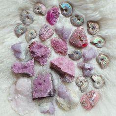 Cobalt Calcite, Spirit Quartz, Rhodochrosite, Mangano Calcite & Ammonite.