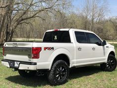 Let's see your White Platinum Pearl - Page 21 - Ford Forum - Community of Ford Truck Fans Ford F150 Fx4, F150 Lifted, 2018 Ford F150, Ford Raptor, Boy Toys, Toys For Boys, F150 Platinum, Truck Detailing, Black Truck