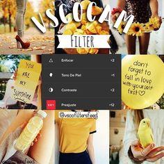 Este filtro me lo pidió @poni.exe resalta mucho las cosas amarillas que salen en la foto. ¡Espero les guste! ──────────────────── #vscofilters #vscofeed #vscoedit #vscocam #vscogrid #vscofiltros #sfs #vscocam #vscomx #vscofeed