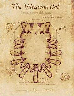The Vitruvian Cat            (=`ェ´=)