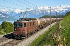 Net Photo: 175 BLS Lotschbergbahn Re (Re at Spiez, Switzerland by Georg Trüb Lake George Ny, Abandoned Train, Old Trains, Locs, Train Tickets, Electric Locomotive, Train Layouts, Train Tracks, Switzerland