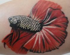 betta tattoo. Omg this is the type of betta I have, just different colors :) <3
