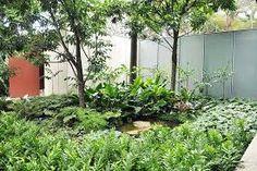 Resultado de imagem para isabel duprat jardins