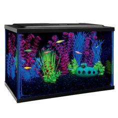 GLO®Fish Starter Kit Aquarium   Aquariums   PetSmart
