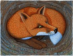 The Fox - Book Illustration by Chris vine