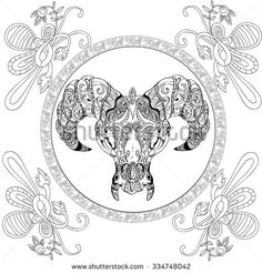 Hand Drawn Bull Adult Coloring Book Page Isolated On White