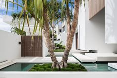 White Box Home Contains a Tropical Enclave in Sunny Australia…